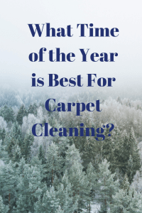 santa monica carpet cleaning
