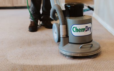 How to Prepare for a Professional Carpet Cleaning [6 Easy Tips]